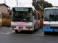 Sawara200901_5