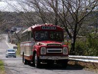 Sawara20090315_02