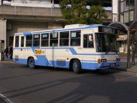 Kamiitiba20090329_1