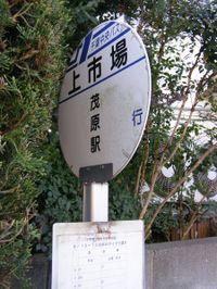 Kamiitiba20090329_4