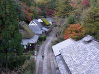 Toriimoto20091114_1
