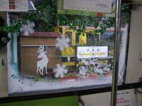 Isumi_moooming20091122_7