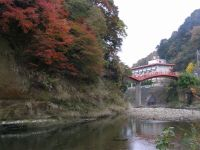 Yorokeikoku20091122_2