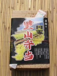 Isumi_satoyama20100314_1