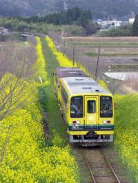 Isumi_siromigaoka20100403_2
