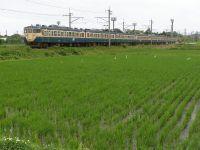 Choja20100611