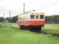 Kominato_mitumata20100809_2