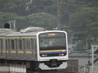 Sawara20100814_1