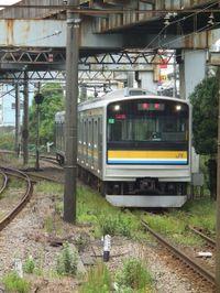 Turumi20101010_05