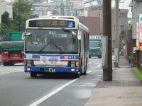 Turumi20101010_12