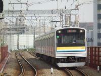 Turumi20101010_20