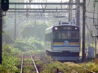 Turumi20101010_25