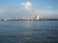 Turumi20101010_30