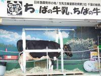 Chiba_mono20101016_15