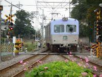 Gunma_tyusho20101024_14
