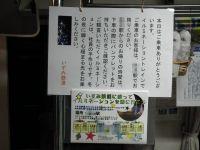 Isumi_iru20101203_04