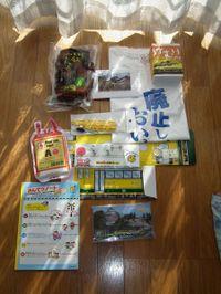 Isumi_fukubukuro20110102_02