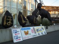 Hosiimo20110110_1