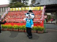 Katuura_big20110219_10