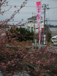 Katuura_big20110219_14