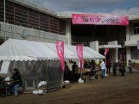 Katuura_big20110219_22