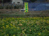 Isumi_bus_20110227_08