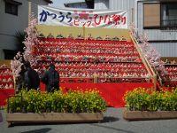 Katuura_big20110303_04