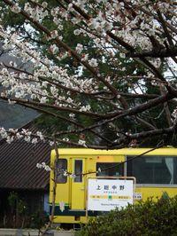 Isumi_moomin20110321_09