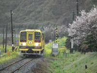 Isumi_moomin20110321_12