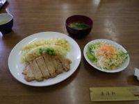 Sawara20110403_02