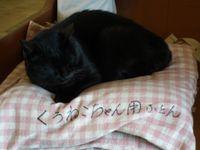 Isumi_kuniyosi20110424_03