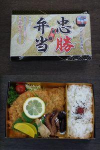 Isumi_rail_20110508_18