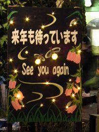 Isumi_hotaru20110614_09