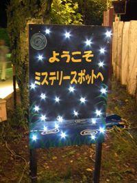 Isumi_hotaru20110614_10