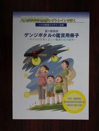 Isumi_hotaru20110615_02