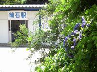 Akaharu20110709_17