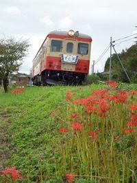 Isumi_kiha52_20110925_04