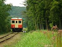 Isumi_kiha52_20111009_03