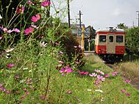 Isumi_kiha52_20111009_10