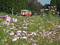 Isumi_kiha52_20111010_03