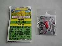 Minami_boso_20111016_46