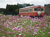 Isumi_kiha52_20111023_05