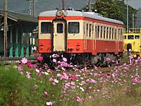 Isumi_kiha52_20111104_03