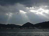 Yamaguchi20111120_19