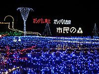 Itihara_20111127_05