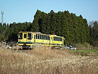 Isumi_moomin20111211_08