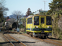 Isumi_moomin20120204_01