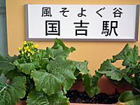 Uchibo100tabi20120211_69