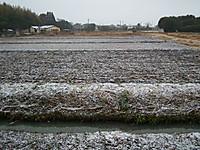 Jitaku20120217