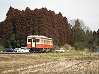 Isumi_kuniyosi20120226_08